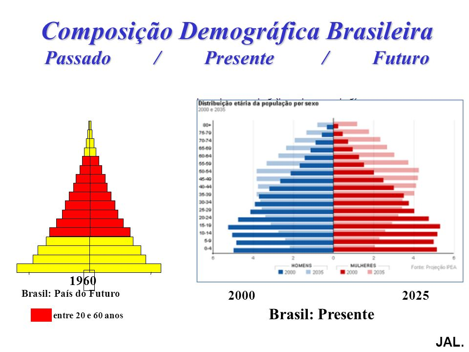 Composição Demográfica Brasileira Passado / Presente / Futuro