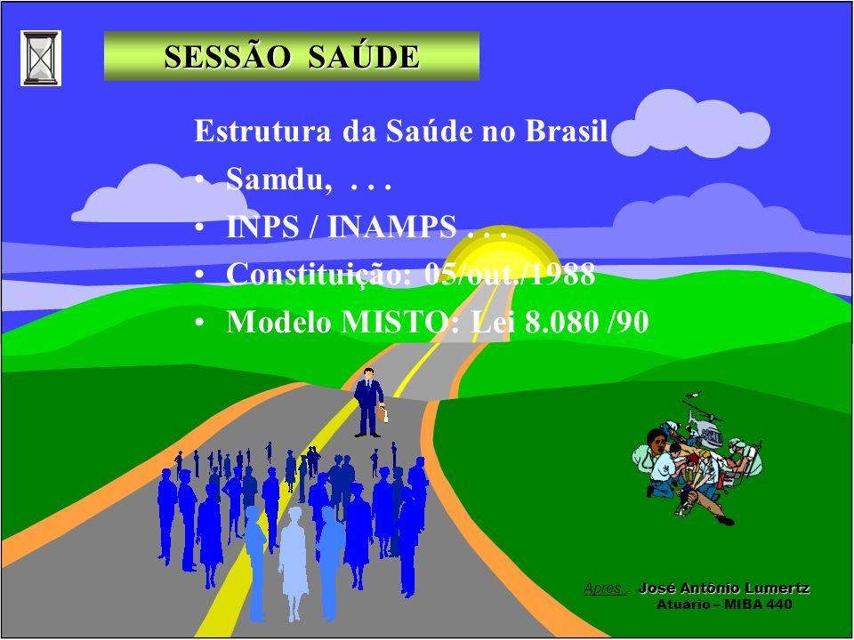 Estrutura da Saúde no Brasil Samdu, . . . INPS / INAMPS . . .