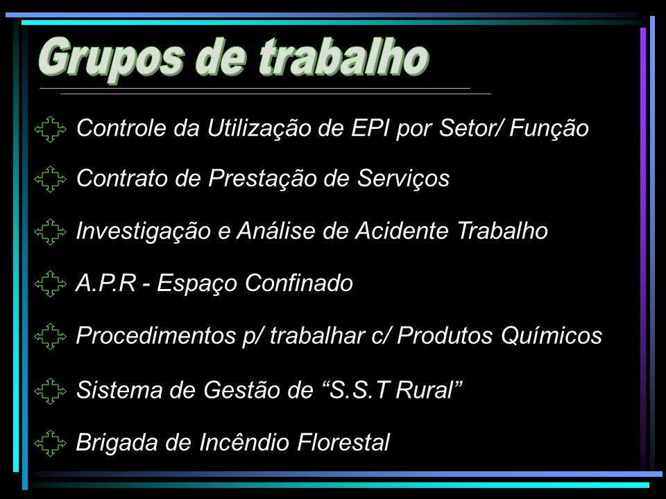 Grupos de trabalho Controle da Utilização de EPI por Setor/ Função