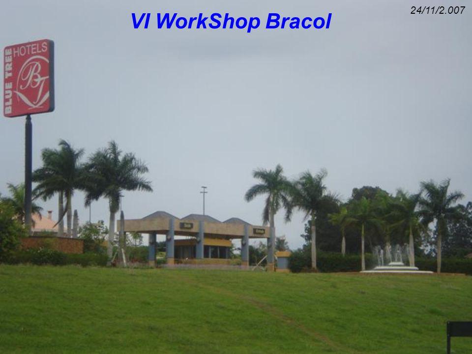 24/11/2.007 VI WorkShop Bracol