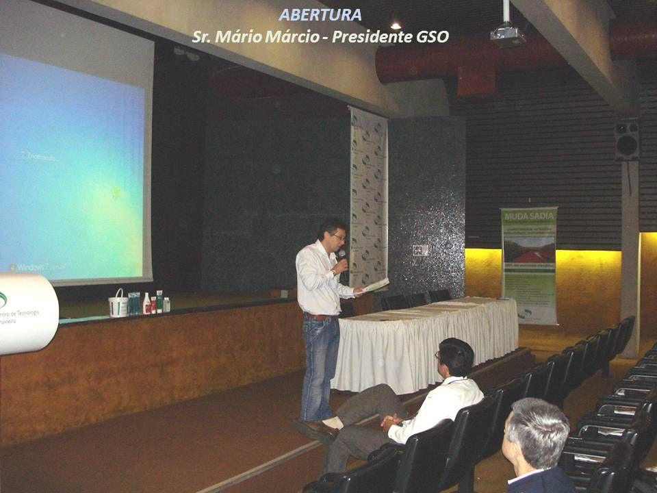 Sr. Mário Márcio - Presidente GSO