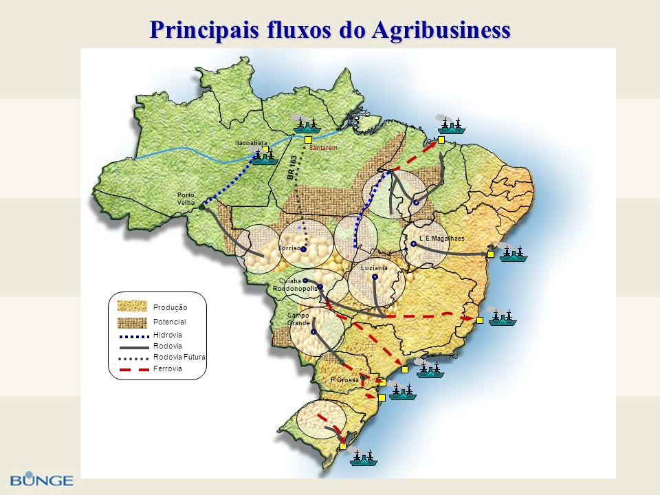 Principais fluxos do Agribusiness