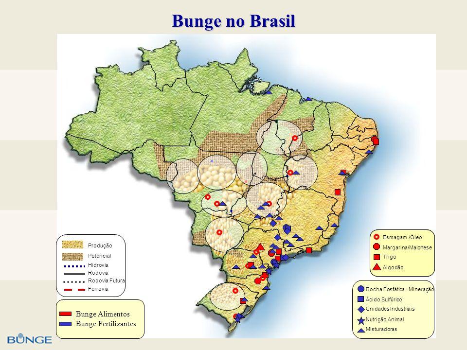 Bunge no Brasil Bunge Alimentos Bunge Fertilizantes Esmagam./Óleo