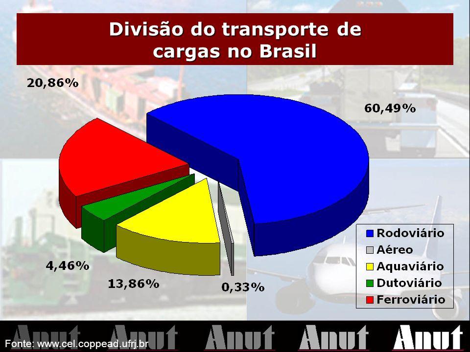 Divisão do transporte de cargas no Brasil