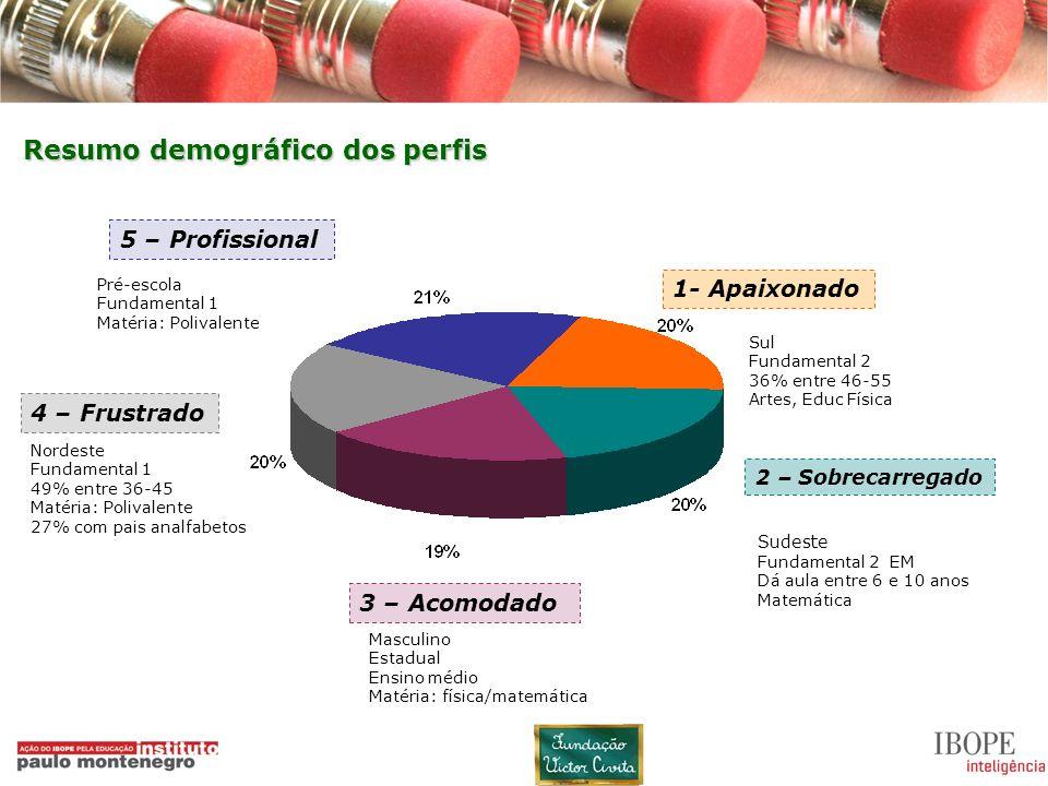 Resumo demográfico dos perfis