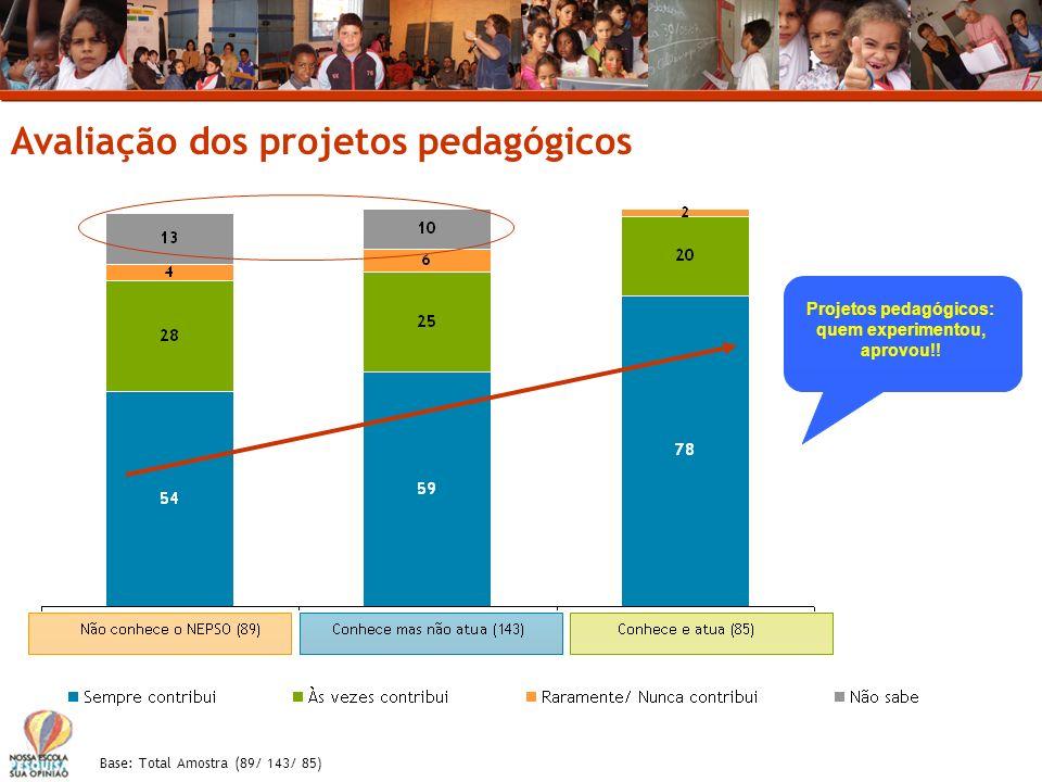 Projetos pedagógicos: quem experimentou, aprovou!!