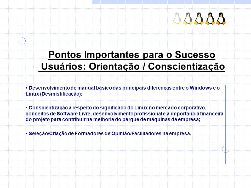 Pontos Importantes para o Sucesso Usuários: Orientação / Conscientização