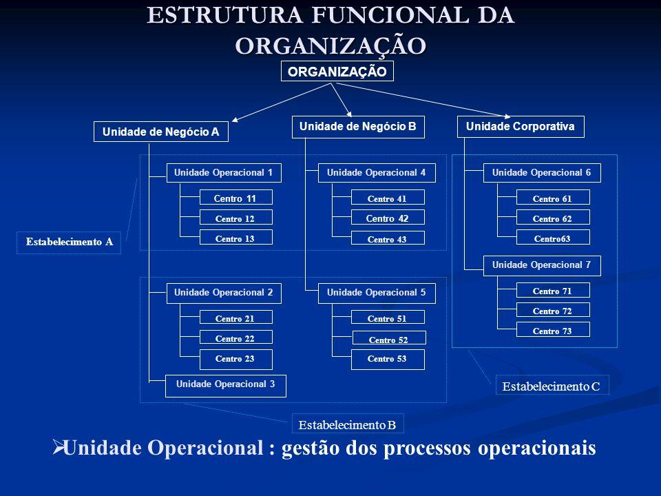ESTRUTURA FUNCIONAL DA ORGANIZAÇÃO