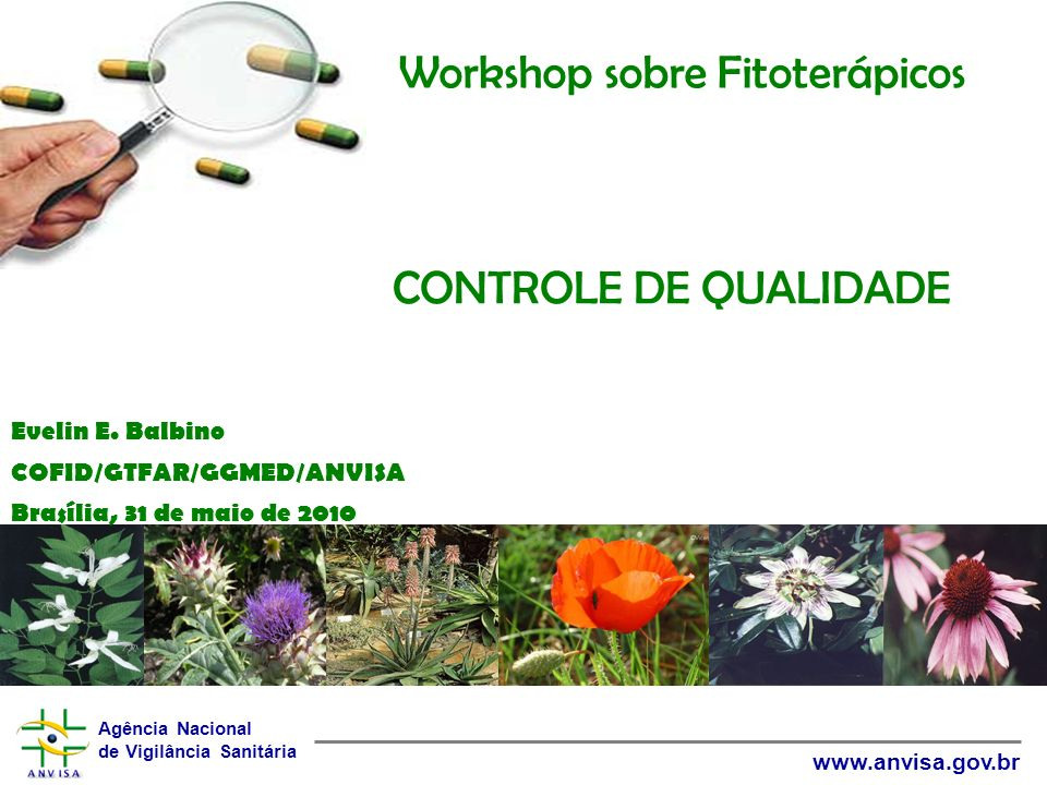 Workshop sobre Fitoterápicos