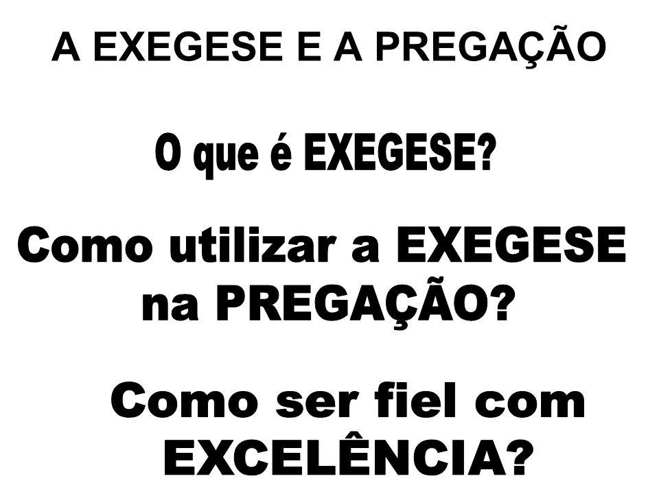 Como utilizar a EXEGESE