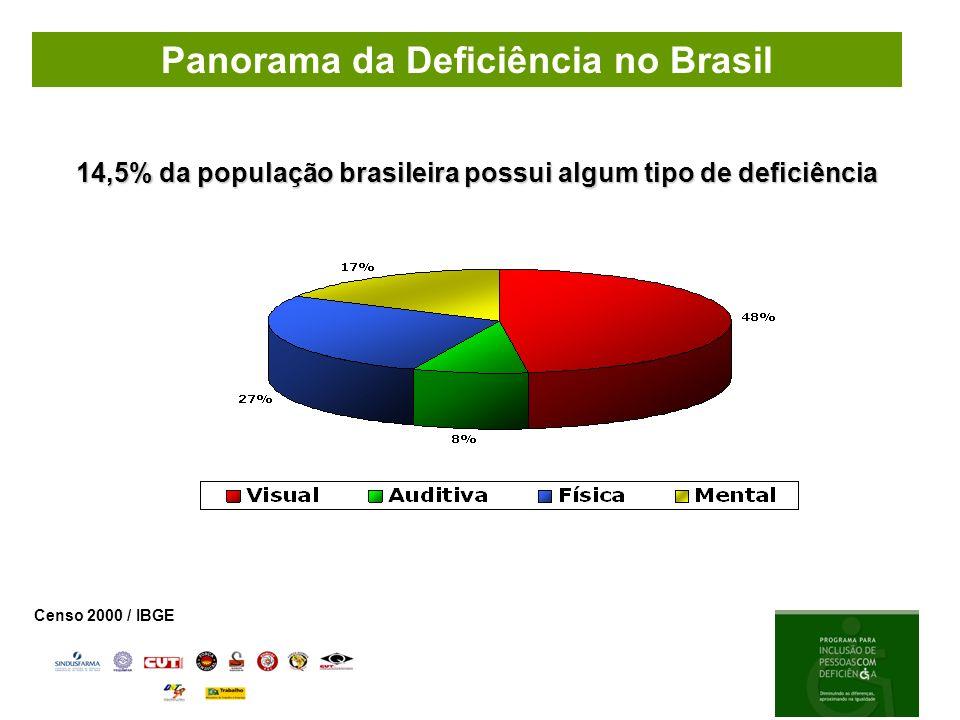 Panorama da Deficiência no Brasil