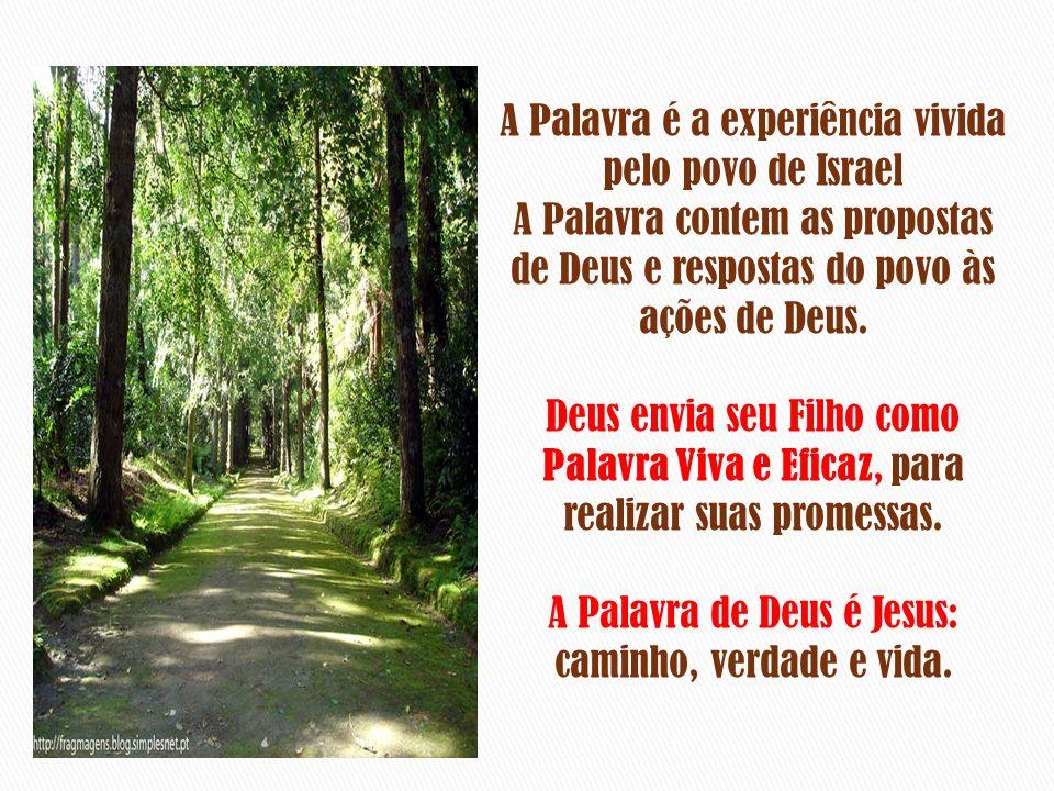 A Palavra é a experiência vivida pelo povo de Israel