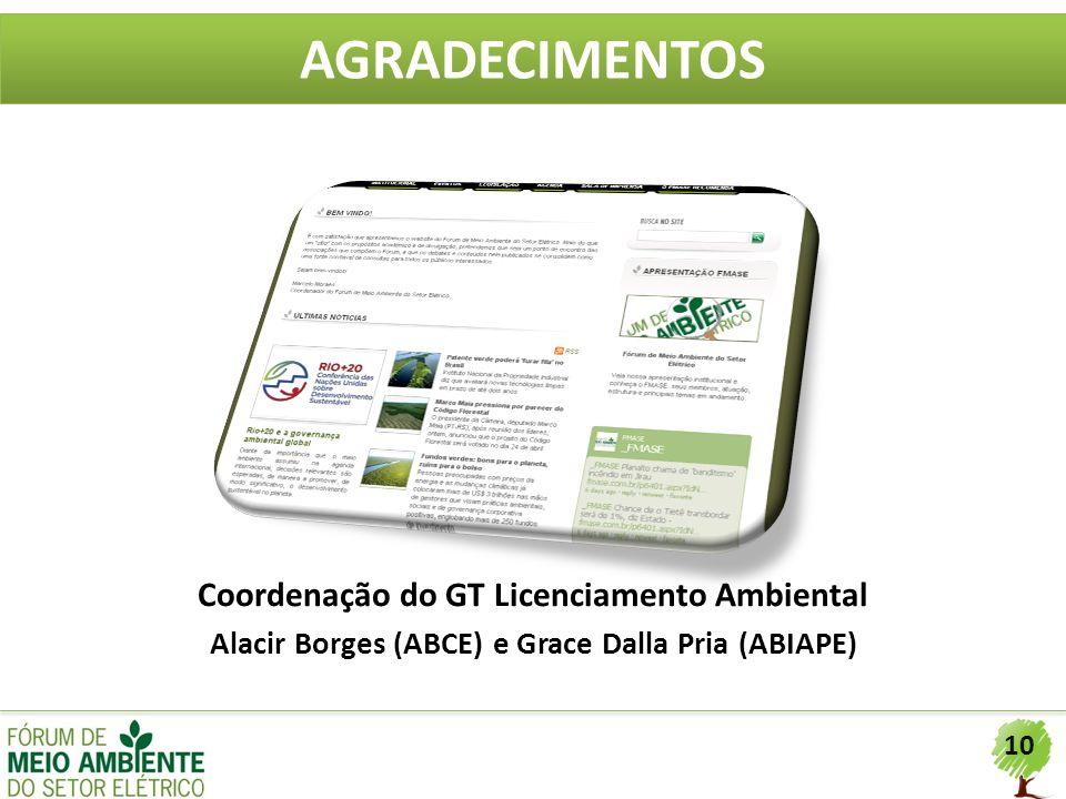 AGRADECIMENTOS Coordenação do GT Licenciamento Ambiental