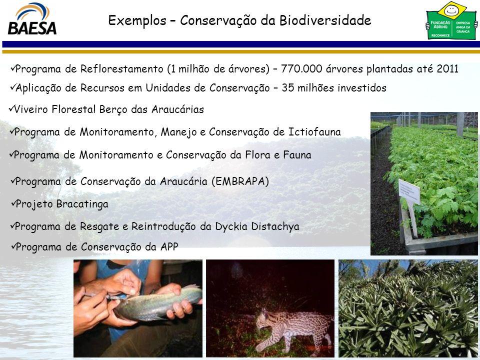 Exemplos – Conservação da Biodiversidade