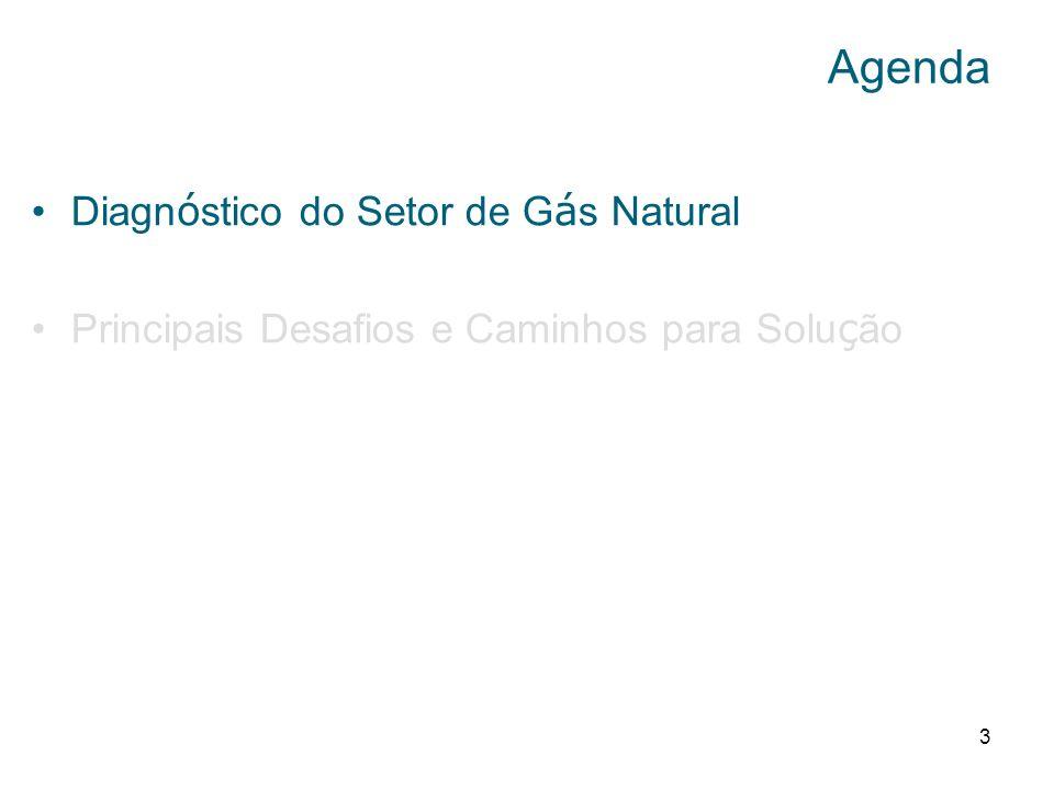 Agenda Diagnóstico do Setor de Gás Natural