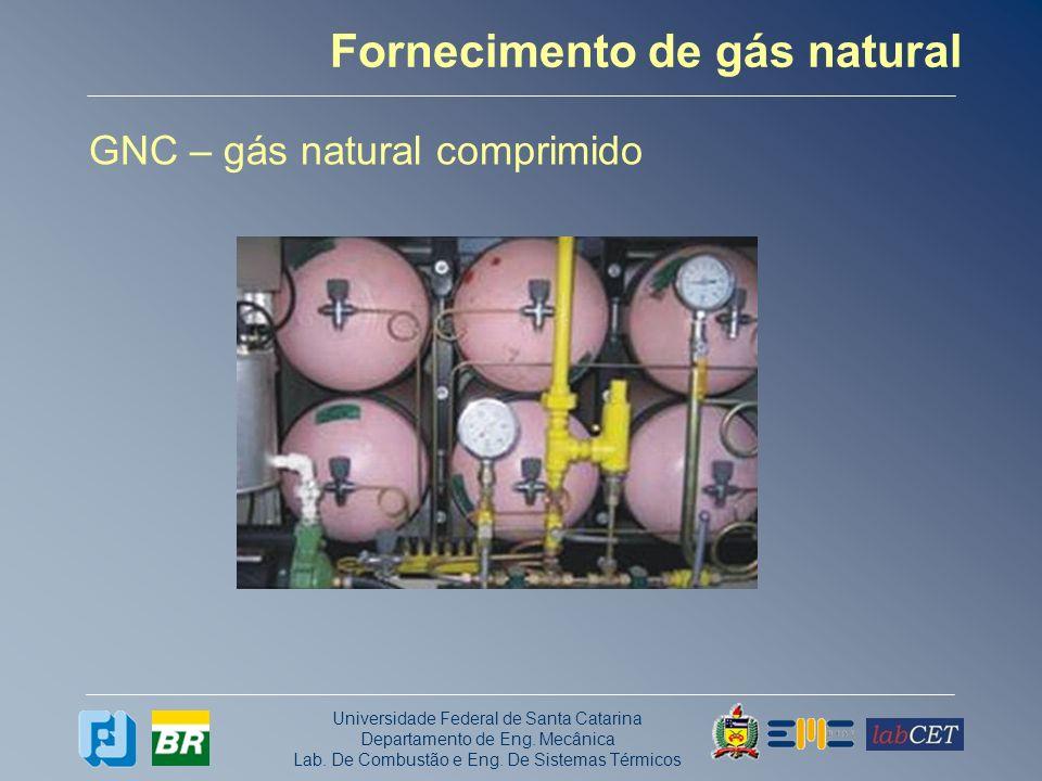 Fornecimento de gás natural
