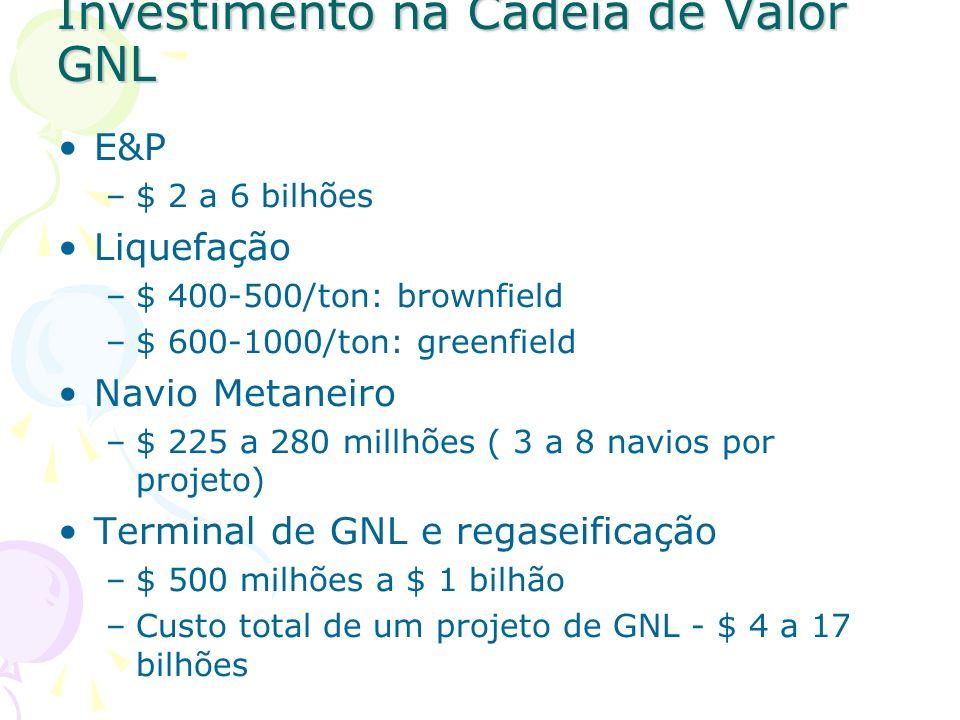 Investimento na Cadeia de Valor GNL