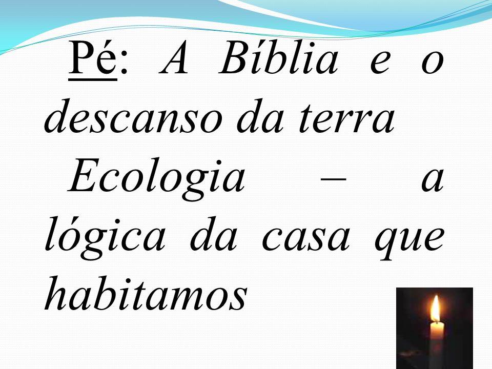 Pé: A Bíblia e o descanso da terra