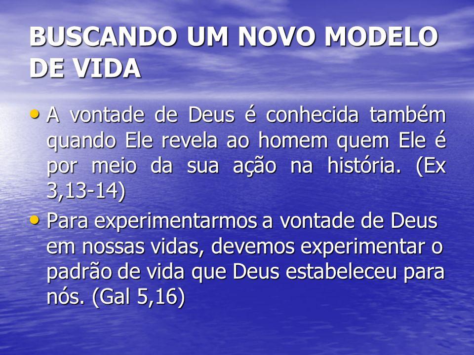BUSCANDO UM NOVO MODELO DE VIDA