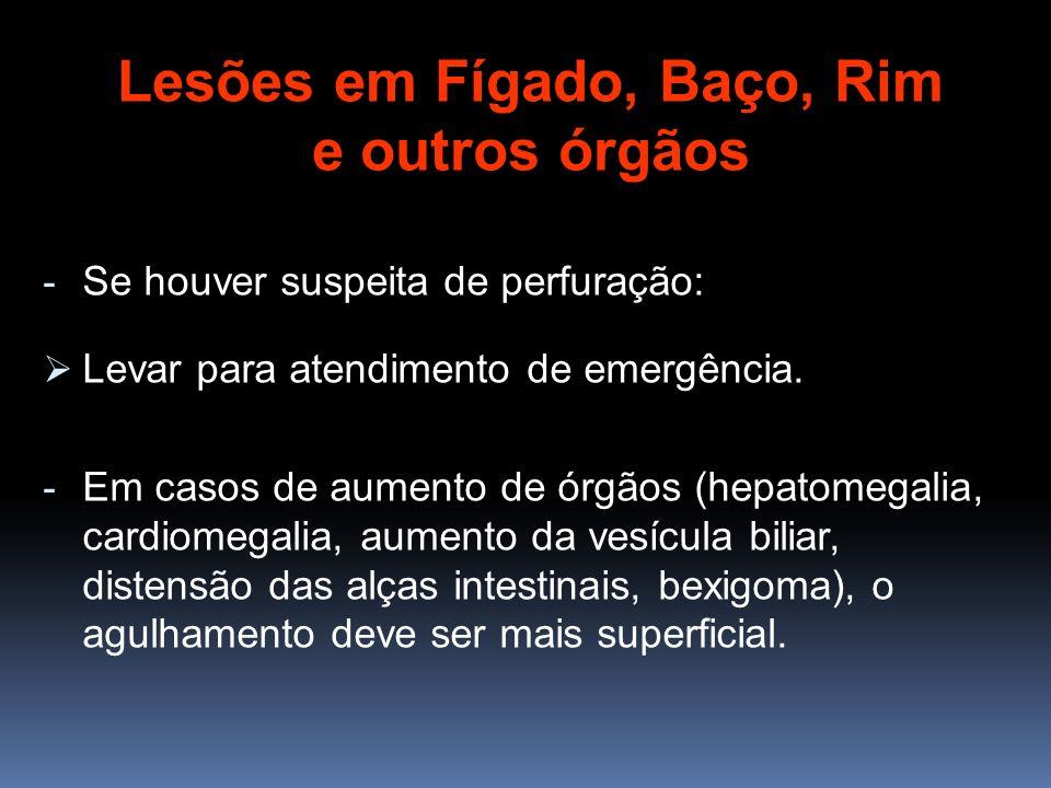 Lesões em Fígado, Baço, Rim e outros órgãos