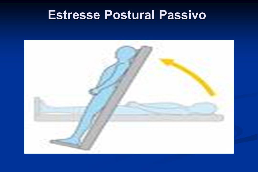 Estresse Postural Passivo