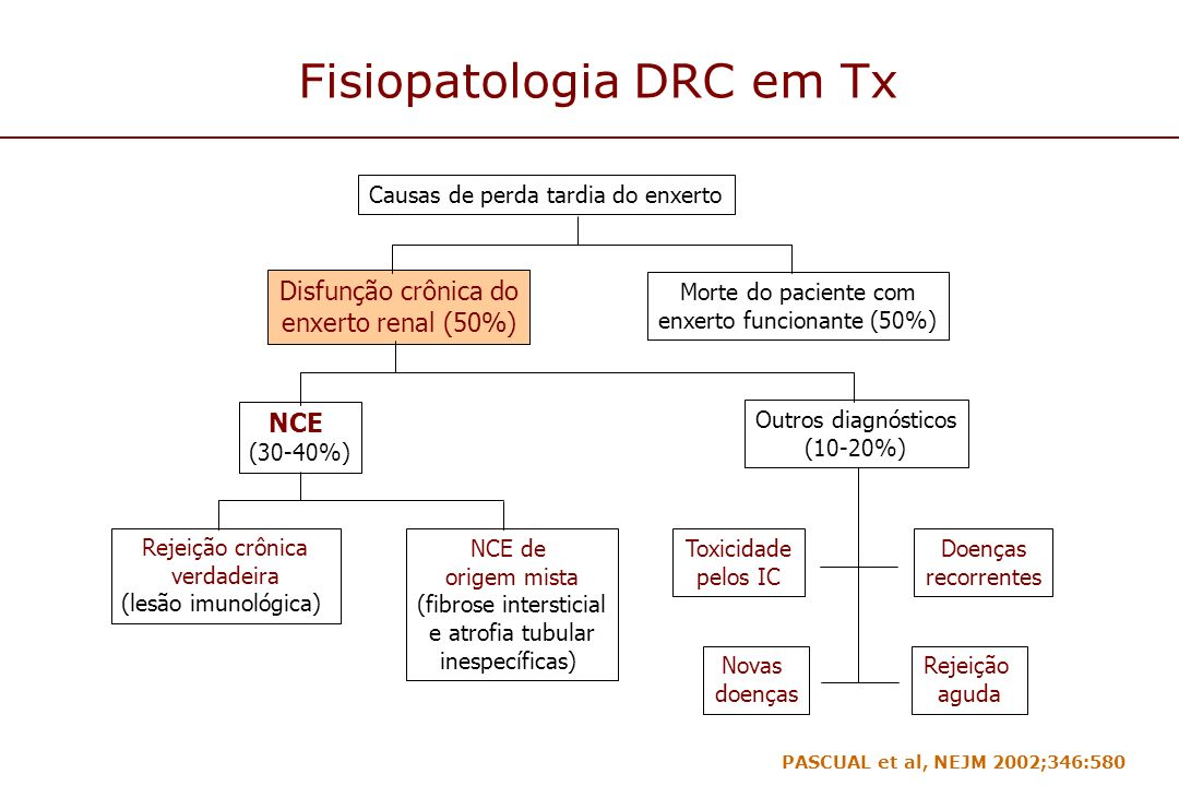 Fisiopatologia DRC em Tx