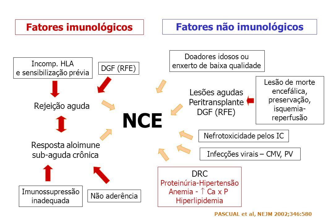 Fatores não imunológicos