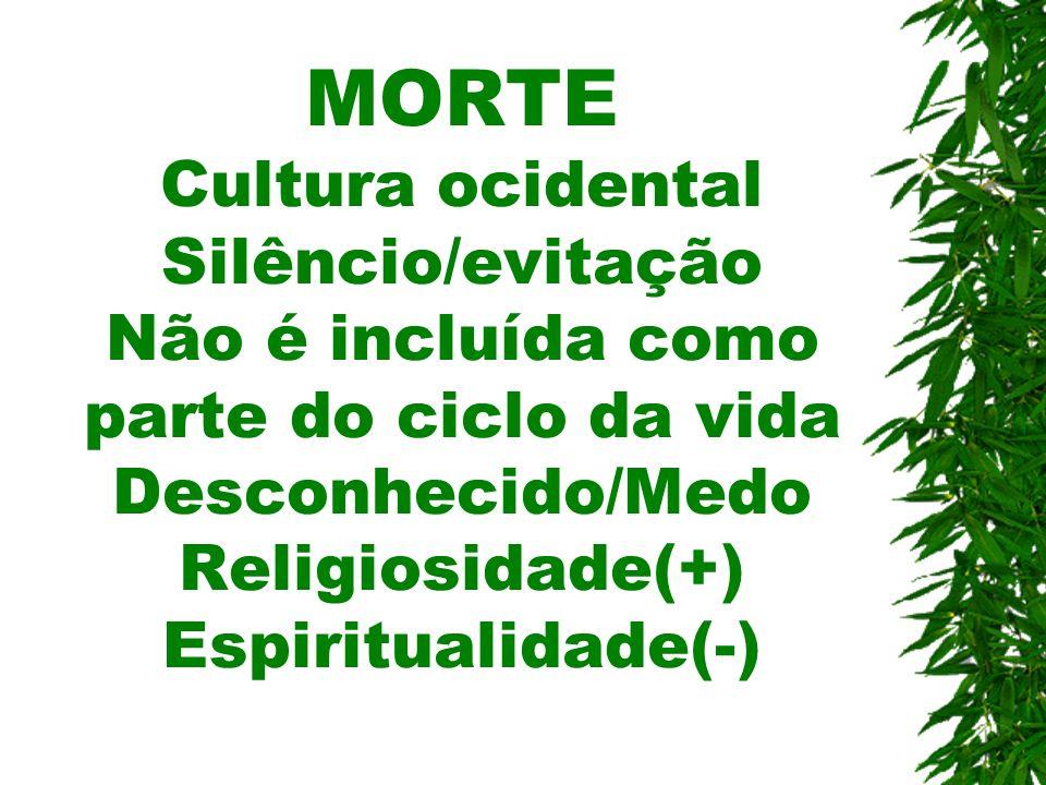 MORTE Cultura ocidental Silêncio/evitação Não é incluída como parte do ciclo da vida Desconhecido/Medo Religiosidade(+) Espiritualidade(-)