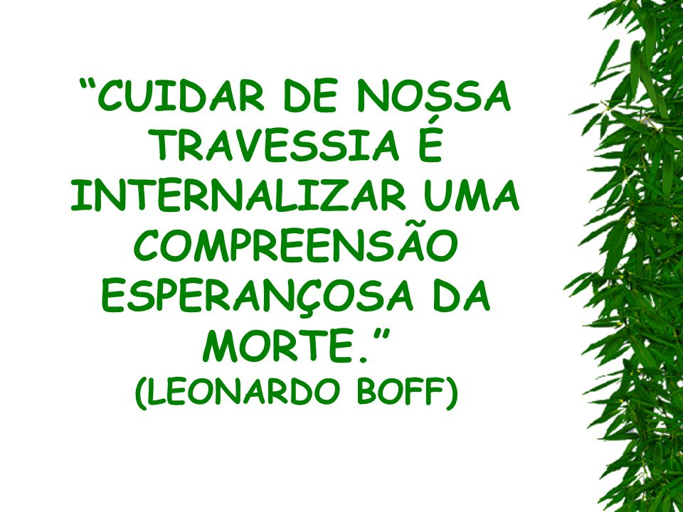 CUIDAR DE NOSSA TRAVESSIA É INTERNALIZAR UMA COMPREENSÃO ESPERANÇOSA DA MORTE. (LEONARDO BOFF)
