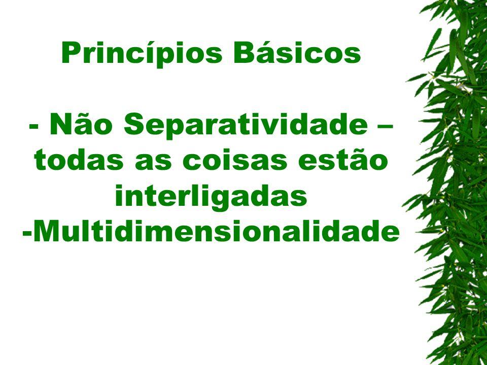 Princípios Básicos - Não Separatividade – todas as coisas estão interligadas -Multidimensionalidade