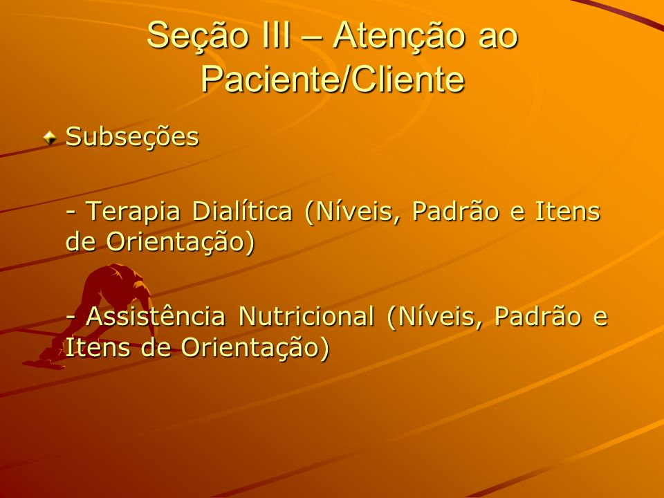 Seção III – Atenção ao Paciente/Cliente