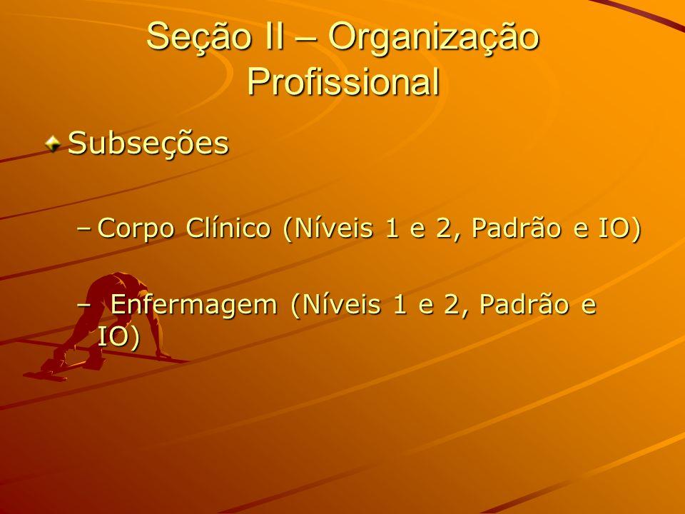 Seção II – Organização Profissional