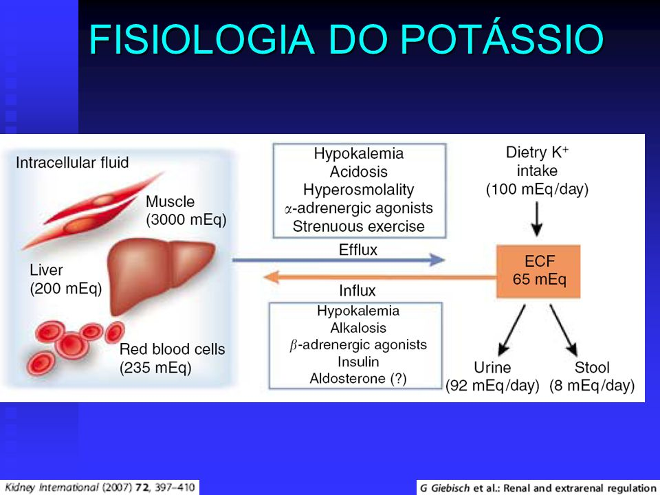 FISIOLOGIA DO POTÁSSIO