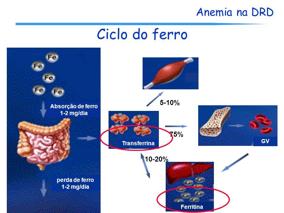Ciclo do ferro 5-10% 75% 10-20% Absorção de ferro 1-2 mg/dia GV