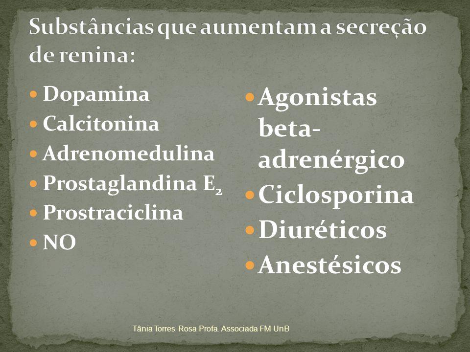 Substâncias que aumentam a secreção de renina: