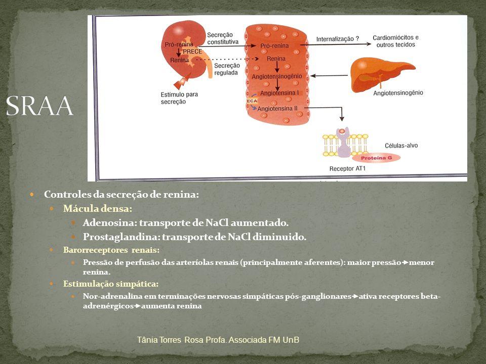 SRAA Controles da secreção de renina: Mácula densa:
