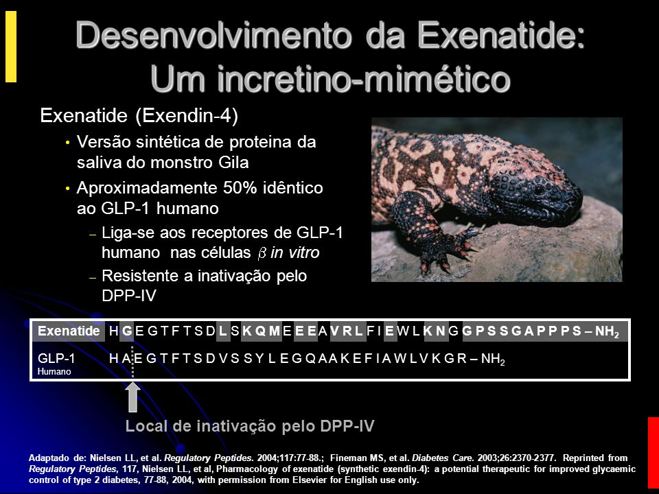 Desenvolvimento da Exenatide: Um incretino-mimético