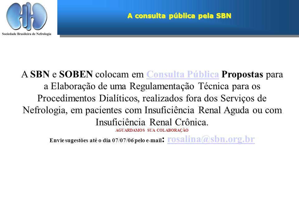 A consulta pública pela SBN