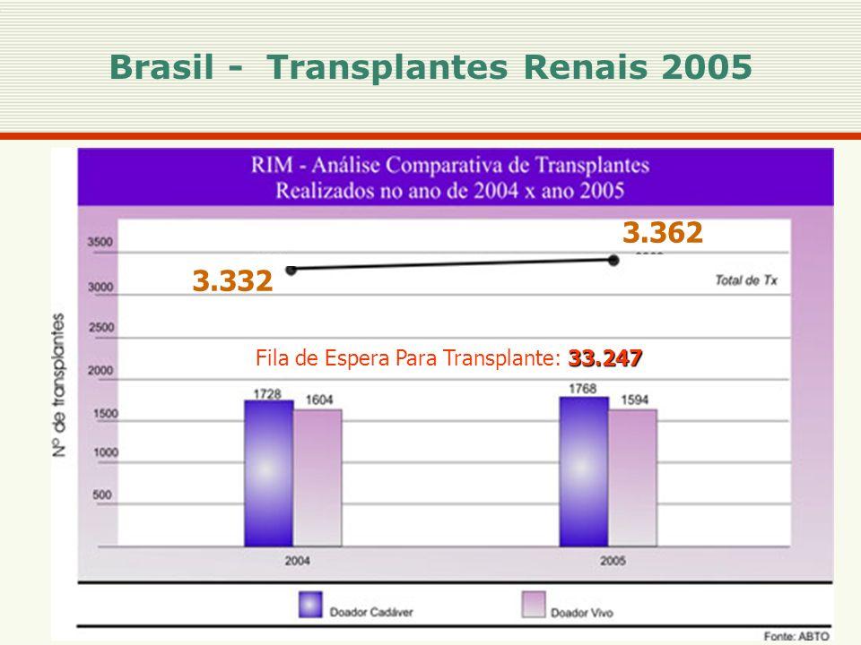 Brasil - Transplantes Renais 2005