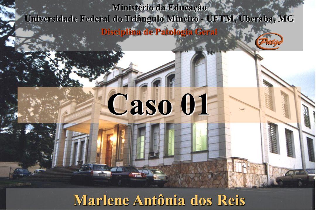 Caso 01 Marlene Antônia dos Reis Ministério da Educação