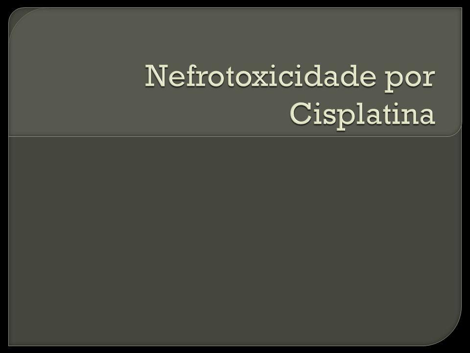 Nefrotoxicidade por Cisplatina