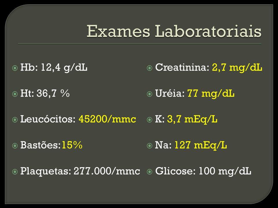 Exames Laboratoriais Hb: 12,4 g/dL Ht: 36,7 % Leucócitos: 45200/mmc