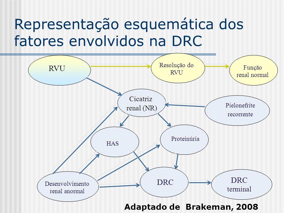 Desenvolvimento renal anormal