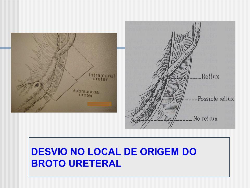 DESVIO NO LOCAL DE ORIGEM DO