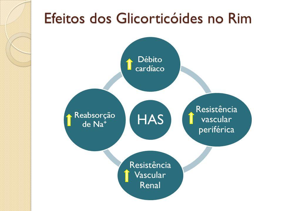 Efeitos dos Glicorticóides no Rim