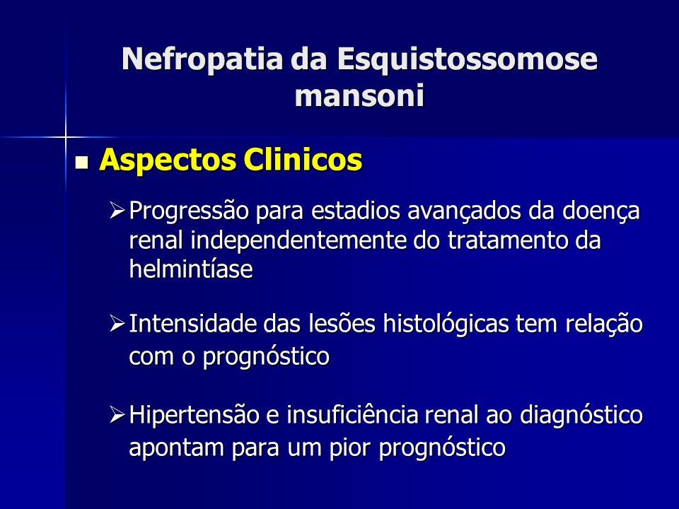 Nefropatia da Esquistossomose mansoni