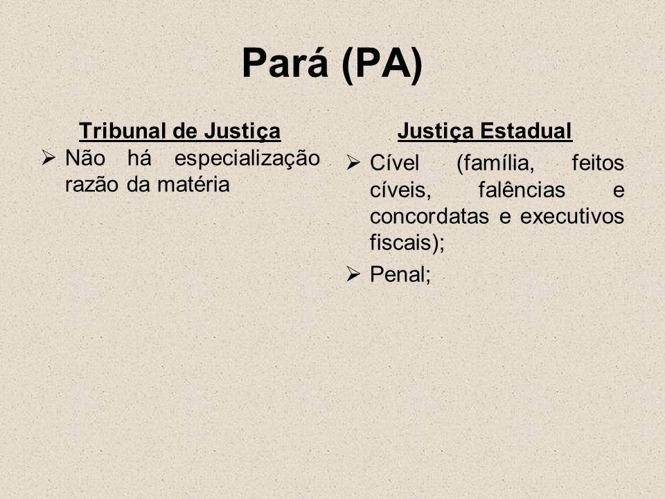 Pará (PA) Tribunal de Justiça Não há especialização razão da matéria