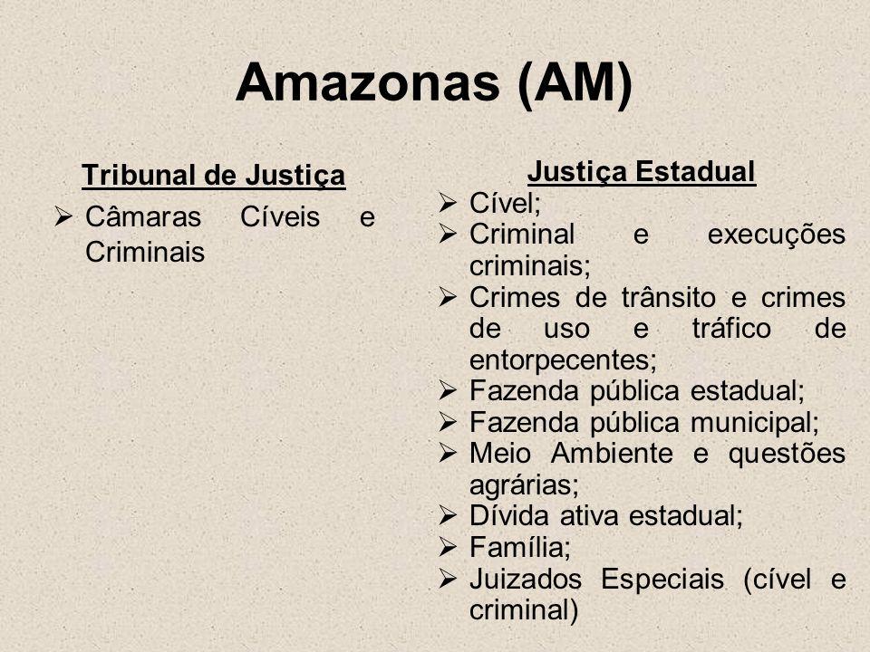 Amazonas (AM) Tribunal de Justiça Câmaras Cíveis e Criminais