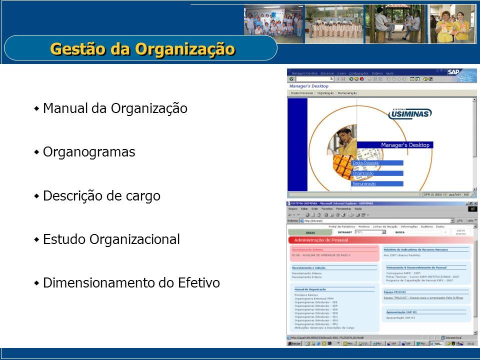 Gestão da Organização Manual da Organização Organogramas