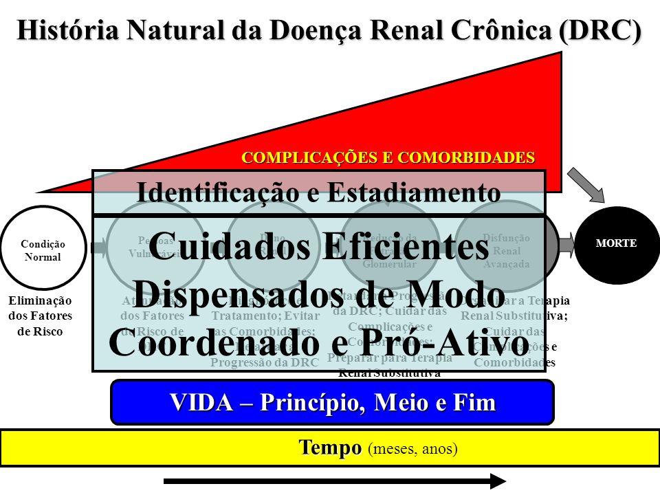História Natural da Doença Renal Crônica (DRC)